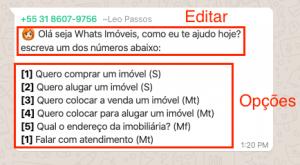 robô de whatsapp